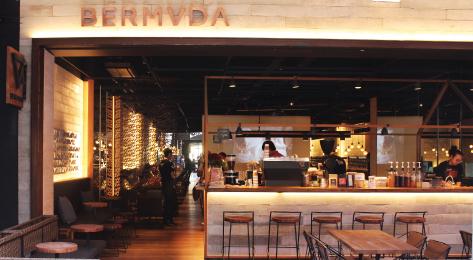Bermvda-1